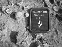 Cronica Cercetărilor Arheologice din România, Campania 2002. Raportul nr. 175, Sc&#226;nteia, La Nuci (Dealul Bode&#351;tilor)<br /><a href='http://foto.cimec.ro/cronica/2002/175/Sacnt4.jpg' target=_blank>Priveşte aceeaşi imagine într-o fereastră nouă</a>