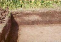 Cronica Cercetărilor Arheologice din România, Campania 2002. Raportul nr. 186, Siret, Dealul Ruina<br /><a href='http://foto.cimec.ro/cronica/2002/186/siret3.jpg' target=_blank>Priveşte aceeaşi imagine într-o fereastră nouă</a>
