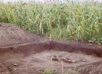Cronica Cercetărilor Arheologice din România, Campania 2002. Raportul nr. 186, Siret, Dealul Ruina<br /><a href='http://foto.cimec.ro/cronica/2002/186/siret6.jpg' target=_blank>Priveşte aceeaşi imagine într-o fereastră nouă</a>