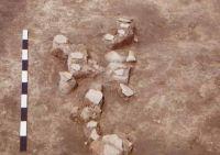 Cronica Cercetărilor Arheologice din România, Campania 2002. Raportul nr. 186, Siret, Dealul Ruina<br /><a href='http://foto.cimec.ro/cronica/2002/186/siret7.jpg' target=_blank>Priveşte aceeaşi imagine într-o fereastră nouă</a>