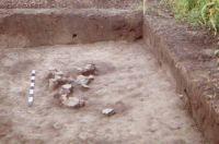 Cronica Cercetărilor Arheologice din România, Campania 2002. Raportul nr. 186, Siret, Dealul Ruina<br /><a href='http://foto.cimec.ro/cronica/2002/186/siret8.jpg' target=_blank>Priveşte aceeaşi imagine într-o fereastră nouă</a>