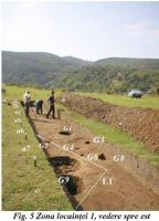 Chronicle of the Archaeological Excavations in Romania, 2002 Campaign. Report no. 192, Suplacu de Barcău, Corău ob. 3<br /><a href='http://foto.cimec.ro/cronica/2002/192/suplacfig5-doc-1.jpg' target=_blank>Display the same picture in a new window</a>