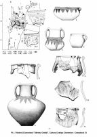Chronicle of the Archaeological Excavations in Romania, 2002 Campaign. Report no. 197, Şoimeni, Várdomb (Ciomortan, Várdomb)<br /><a href='http://foto.cimec.ro/cronica/2002/197/Image2.jpg' target=_blank>Display the same picture in a new window</a>