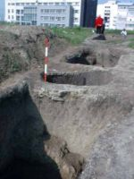 Chronicle of the Archaeological Excavations in Romania, 2002 Campaign. Report no. 212, Vaslui<br /><a href='http://foto.cimec.ro/cronica/2002/212/photo3-96-10-1-03-40.jpg' target=_blank>Display the same picture in a new window</a>