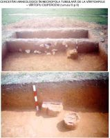 Chronicle of the Archaeological Excavations in Romania, 2002 Campaign. Report no. 214, Vârtopu, Vârtoapele<br /><a href='http://foto.cimec.ro/cronica/2002/214/01.jpg' target=_blank>Display the same picture in a new window</a>