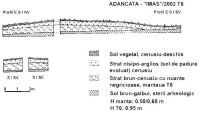 Chronicle of the Archaeological Excavations in Romania, 2003 Campaign. Report no. 4, Adâncata, Dealul Lipovanului.<br /> Sector T6 2003.<br /><a href='http://foto.cimec.ro/cronica/2003/004/T6-2003/adancata-profil-t6-2002.jpg' target=_blank>Display the same picture in a new window</a>