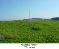 Chronicle of the Archaeological Excavations in Romania, 2003 Campaign. Report no. 4, Adâncata, Dealul Lipovanului.<br /> Sector T8 2003.<br /><a href='http://foto.cimec.ro/cronica/2003/004/T8-2003/adancata-t8-2003-a.JPG' target=_blank>Display the same picture in a new window</a>