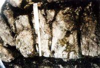Cronica Cercetărilor Arheologice din România, Campania 2003. Raportul nr. 24, Augustin, Tipia Ormenişului (Ţepelul Ormenişului)<br /><a href='http://foto.cimec.ro/cronica/2003/024/augustin-fig-4.JPG' target=_blank>Priveşte aceeaşi imagine într-o fereastră nouă</a>