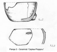 Chronicle of the Archaeological Excavations in Romania, 2003 Campaign. Report no. 53, Ceplea, Biserica Dacilor (Valea Satului; Casa Cepleanu)<br /><a href='http://foto.cimec.ro/cronica/2003/053/ceplea-valea-satului-pl-2.jpg' target=_blank>Display the same picture in a new window</a>