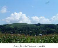 Cronica Cercetărilor Arheologice din România, Campania 2003. Raportul nr. 61, Costi&#351;a, Dealul Cet&#259;&#355;uia<br /><a href='http://foto.cimec.ro/cronica/2003/061/Costisa-Cetatuia-1.jpg' target=_blank>Priveşte aceeaşi imagine într-o fereastră nouă</a>
