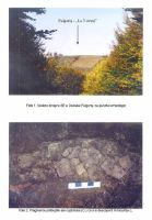 Chronicle of the Archaeological Excavations in Romania, 2003 Campaign. Report no. 74, Fulgeriş, La Trei Cireşi (Dealul Fulgeriş)<br /><a href='http://foto.cimec.ro/cronica/2003/074/Fulgeris-1.jpg' target=_blank>Display the same picture in a new window</a>