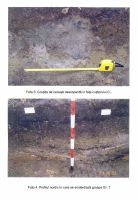 Chronicle of the Archaeological Excavations in Romania, 2003 Campaign. Report no. 74, Fulgeriş, La Trei Cireşi (Dealul Fulgeriş)<br /><a href='http://foto.cimec.ro/cronica/2003/074/Fulgeris-2.jpg' target=_blank>Display the same picture in a new window</a>