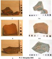 Chronicle of the Archaeological Excavations in Romania, 2003 Campaign. Report no. 79, Gherghiţa, La Târg (Şcoala Generală)<br /><a href='http://foto.cimec.ro/cronica/2003/079/pl-3.jpg' target=_blank>Display the same picture in a new window</a>