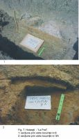 Chronicle of the Archaeological Excavations in Romania, 2003 Campaign. Report no. 87, Hoiseşti, La pod<br /><a href='http://foto.cimec.ro/cronica/2003/087/Hoisesti-07.jpg' target=_blank>Display the same picture in a new window</a>