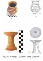 Chronicle of the Archaeological Excavations in Romania, 2003 Campaign. Report no. 87, Hoiseşti, La pod<br /><a href='http://foto.cimec.ro/cronica/2003/087/Hoisesti-10.jpg' target=_blank>Display the same picture in a new window</a>