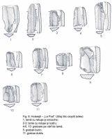 Cronica Cercetărilor Arheologice din România, Campania 2003. Raportul nr. 87, Hoiseşti, La Pod<br /><a href='http://foto.cimec.ro/cronica/2003/087/Hoisesti-08.jpg' target=_blank>Priveşte aceeaşi imagine într-o fereastră nouă</a>