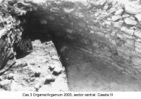 Chronicle of the Archaeological Excavations in Romania, 2003 Campaign. Report no. 97, Jurilovca, Capul Dolojman.<br /> Sector sectorICEM.<br /><a href='http://foto.cimec.ro/cronica/2003/097/sectorICEM/jurilovca-argamum-cas-3-sector-icem.JPG' target=_blank>Display the same picture in a new window</a>