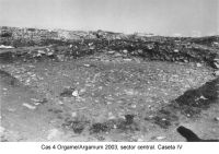 Chronicle of the Archaeological Excavations in Romania, 2003 Campaign. Report no. 97, Jurilovca, Capul Dolojman.<br /> Sector sectorICEM.<br /><a href='http://foto.cimec.ro/cronica/2003/097/sectorICEM/jurilovca-argamum-cas-4-sector-icem.JPG' target=_blank>Display the same picture in a new window</a>