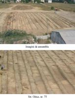 Chronicle of the Archaeological Excavations in Romania, 2003 Campaign. Report no. 113, Mangalia<br /><a href='http://foto.cimec.ro/cronica/2003/113/Mangalia-ANL-6.jpg' target=_blank>Display the same picture in a new window</a>
