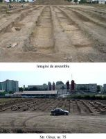 Chronicle of the Archaeological Excavations in Romania, 2003 Campaign. Report no. 113, Mangalia<br /><a href='http://foto.cimec.ro/cronica/2003/113/Mangalia-ANL-7.jpg' target=_blank>Display the same picture in a new window</a>
