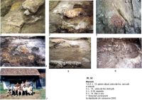Chronicle of the Archaeological Excavations in Romania, 2003 Campaign. Report no. 122, Covasna, Curmătura (In Cier)<br /><a href='http://foto.cimec.ro/cronica/2003/122/meresti-dambul-pipasilor-pl-4.jpg' target=_blank>Display the same picture in a new window</a>