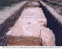 Chronicle of the Archaeological Excavations in Romania, 2003 Campaign. Report no. 136, Ostrov, Ferma 4 (Regie)<br /><a href='http://foto.cimec.ro/cronica/2003/136/Ostrov-Durostorum-3.JPG' target=_blank>Display the same picture in a new window</a>