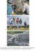 Cronica Cercetărilor Arheologice din România, Campania 2003. Raportul nr. 141, Pietroasa Mică, Gruiu Dării<br /><a href='http://foto.cimec.ro/cronica/2003/141/Pietroasele-2.jpg' target=_blank>Priveşte aceeaşi imagine într-o fereastră nouă</a>