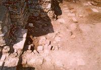 Cronica Cercetărilor Arheologice din România, Campania 2003. Raportul nr. 142, Pietroasele, Valea Bazinului (La puţul lui Cârnu Puche)<br /><a href='http://foto.cimec.ro/cronica/2003/142/Pietroasele-Thermae.jpg' target=_blank>Priveşte aceeaşi imagine într-o fereastră nouă</a>