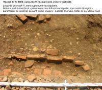 Chronicle of the Archaeological Excavations in Romania, 2003 Campaign. Report no. 154, Răcarii De Jos<br /><a href='http://foto.cimec.ro/cronica/2003/154/racari-fig-09-loc-iv.jpg' target=_blank>Display the same picture in a new window</a>