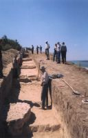 Chronicle of the Archaeological Excavations in Romania, 2003 Campaign. Report no. 167, Satu Nou, Vadu Vacilor<br /><a href='http://foto.cimec.ro/cronica/2003/167/satu-nou-valea-lui-voicu-fig-10.jpg' target=_blank>Display the same picture in a new window</a>