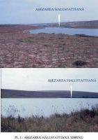 Chronicle of the Archaeological Excavations in Romania, 2003 Campaign. Report no. 203, Ţibrinu, Lacul Ţibrinu<br /><a href='http://foto.cimec.ro/cronica/2003/203/Tibrinu-1.jpg' target=_blank>Display the same picture in a new window</a>