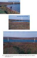Chronicle of the Archaeological Excavations in Romania, 2003 Campaign. Report no. 203, Ţibrinu, Lacul Ţibrinu<br /><a href='http://foto.cimec.ro/cronica/2003/203/Tibrinu-2.jpg' target=_blank>Display the same picture in a new window</a>