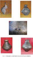 Chronicle of the Archaeological Excavations in Romania, 2003 Campaign. Report no. 203, Ţibrinu, Lacul Ţibrinu<br /><a href='http://foto.cimec.ro/cronica/2003/203/Tibrinu-5.jpg' target=_blank>Display the same picture in a new window</a>