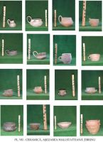 Chronicle of the Archaeological Excavations in Romania, 2003 Campaign. Report no. 203, Ţibrinu, Lacul Ţibrinu<br /><a href='http://foto.cimec.ro/cronica/2003/203/Tibrinu-7.jpg' target=_blank>Display the same picture in a new window</a>