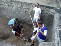 Chronicle of the Archaeological Excavations in Romania, 2003 Campaign. Report no. 207, Vaslui<br /><a href='http://foto.cimec.ro/cronica/2003/207/vaslui-curtile-domnesti-014.jpg' target=_blank>Display the same picture in a new window</a>