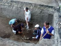 Chronicle of the Archaeological Excavations in Romania, 2003 Campaign. Report no. 207, Vaslui<br /><a href='http://foto.cimec.ro/cronica/2003/207/vaslui-curtile-domnesti-015.jpg' target=_blank>Display the same picture in a new window</a>