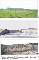 Chronicle of the Archaeological Excavations in Romania, 2003 Campaign. Report no. 210, Vitanesti, La Măgurice (Teleor 007)<br /><a href='http://foto.cimec.ro/cronica/2003/210/Vitanesti-Magurice.JPG' target=_blank>Display the same picture in a new window</a>