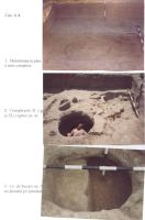 Chronicle of the Archaeological Excavations in Romania, 2003 Campaign. Report no. 211, Vlădeni, Popina Blagodeasca<br /><a href='http://foto.cimec.ro/cronica/2003/211/vladeni-popina-blagodeasca-pl-xi.jpg' target=_blank>Display the same picture in a new window</a>