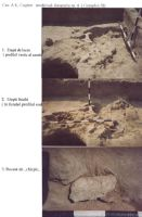 Chronicle of the Archaeological Excavations in Romania, 2003 Campaign. Report no. 211, Vlădeni, Popina Blagodeasca<br /><a href='http://foto.cimec.ro/cronica/2003/211/vladeni-popina-blagodeasca-pl-xiii.jpg' target=_blank>Display the same picture in a new window</a>