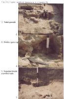 Chronicle of the Archaeological Excavations in Romania, 2003 Campaign. Report no. 211, Vlădeni, Popina Blagodeasca<br /><a href='http://foto.cimec.ro/cronica/2003/211/vladeni-popina-blagodeasca-pl-xiv.jpg' target=_blank>Display the same picture in a new window</a>