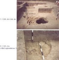 Chronicle of the Archaeological Excavations in Romania, 2003 Campaign. Report no. 211, Vlădeni, Popina Blagodeasca<br /><a href='http://foto.cimec.ro/cronica/2003/211/vladeni-popina-blagodeasca-pl-xv.jpg' target=_blank>Display the same picture in a new window</a>