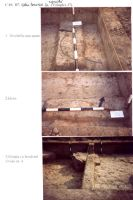 Chronicle of the Archaeological Excavations in Romania, 2003 Campaign. Report no. 211, Vlădeni, Popina Blagodeasca<br /><a href='http://foto.cimec.ro/cronica/2003/211/vladeni-popina-blagodeasca-pl-xx.jpg' target=_blank>Display the same picture in a new window</a>