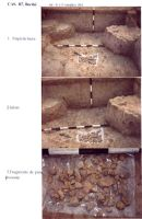 Chronicle of the Archaeological Excavations in Romania, 2003 Campaign. Report no. 211, Vlădeni, Popina Blagodeasca<br /><a href='http://foto.cimec.ro/cronica/2003/211/vladeni-popina-blagodeasca-pl-xxi.jpg' target=_blank>Display the same picture in a new window</a>