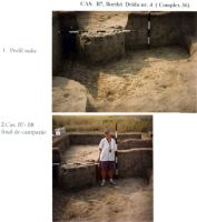 Chronicle of the Archaeological Excavations in Romania, 2003 Campaign. Report no. 211, Vlădeni, Popina Blagodeasca<br /><a href='http://foto.cimec.ro/cronica/2003/211/vladeni-popina-blagodeasca-pl-xxii.jpg' target=_blank>Display the same picture in a new window</a>