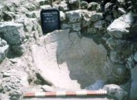 Chronicle of the Archaeological Excavations in Romania, 2004 Campaign. Report no. 1, Adamclisi, Cetate.<br /> Sector sectorD.<br /><a href='http://foto.cimec.ro/cronica/2004/001/rsz-28.jpg' target=_blank>Display the same picture in a new window</a>