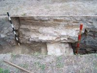 Chronicle of the Archaeological Excavations in Romania, 2004 Campaign. Report no. 48, Bordeşti, Dealul Străjii<br /><a href='http://foto.cimec.ro/cronica/2004/048/rsz-27.jpg' target=_blank>Display the same picture in a new window</a>