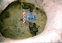 Chronicle of the Archaeological Excavations in Romania, 2004 Campaign. Report no. 54, Bucu, Pochina (Rezervaţia Arheologică)<br /><a href='http://foto.cimec.ro/cronica/2004/054/rsz-0.jpg' target=_blank>Display the same picture in a new window</a>
