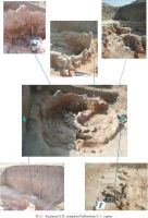 Chronicle of the Archaeological Excavations in Romania, 2004 Campaign. Report no. 62, Capidava, La Bursuci.<br /> Sector 06-ilustratie sector X.<br /><a href='http://foto.cimec.ro/cronica/2004/062/rsz-1.jpg' target=_blank>Display the same picture in a new window</a>