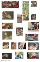 Cronica Cercetărilor Arheologice din România, Campania 2004. Raportul nr. 73, Cheia, Vatra satului<br /><a href='http://foto.cimec.ro/cronica/2004/073/rsz-7.jpg' target=_blank>Priveşte aceeaşi imagine într-o fereastră nouă</a>
