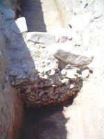 Chronicle of the Archaeological Excavations in Romania, 2004 Campaign. Report no. 86, Dalboşeţ, Dragomireana<br /><a href='http://foto.cimec.ro/cronica/2004/086/rsz-0.jpg' target=_blank>Display the same picture in a new window</a>